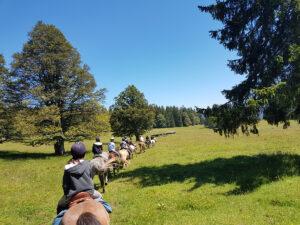 equitation3